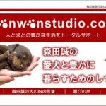「森田誠の愛犬と豊かに暮らすためのしつけ法」DVD2枚セット【検証とレビュー】特典付き