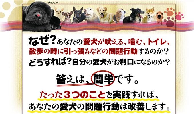 ドッグトレーナー藤井聡が教える犬のしつけ教室